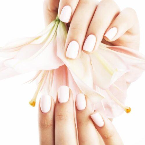 Beauty Package Bioseaweed Gel Manicure - Earthsavers Spa + Store