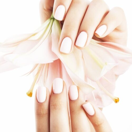 Beauty Package Bioseaweed Gel Manicure - Earthsavers Spa + Store