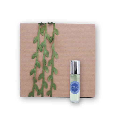 scent gift box | earthsavers spa + store